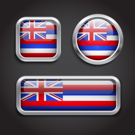 Set of Hawaii  flag glass buttons Vector