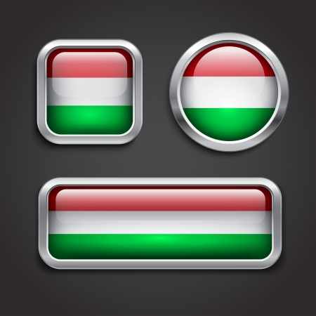 Set of Hungary  flag glass buttons, vector illustration Vector