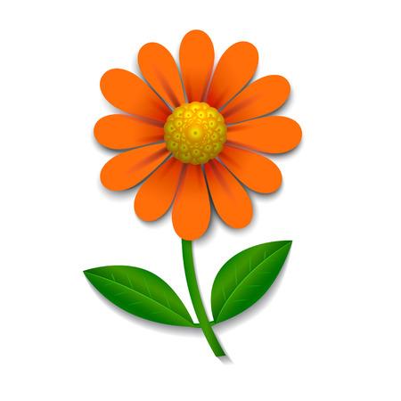 flor aislada: Flor roja aislado en blanco, elemento de dise�o, vector Vectores