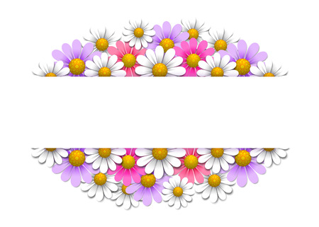 daisy vector: Floral background with daisy, vector illustration