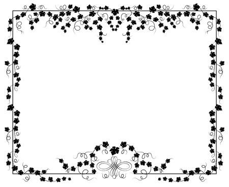 ivy vine: Frame from an ivy, vector illustration. Floral frame