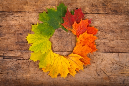 Colorful autumn leaves in form of wreath on rustic wooden background  photo