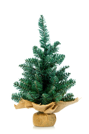 undecorated: Small undecorated Christmas tree in burlap stand over white background.
