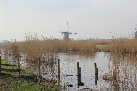 Windmills of Kinderdijk 版權商用圖片