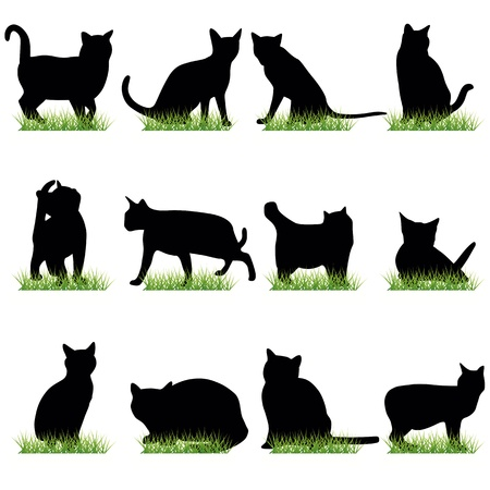 pussy cat: Cats silhouettes set Illustration
