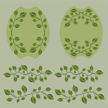 Olive branches set Stock Vector - 9819978