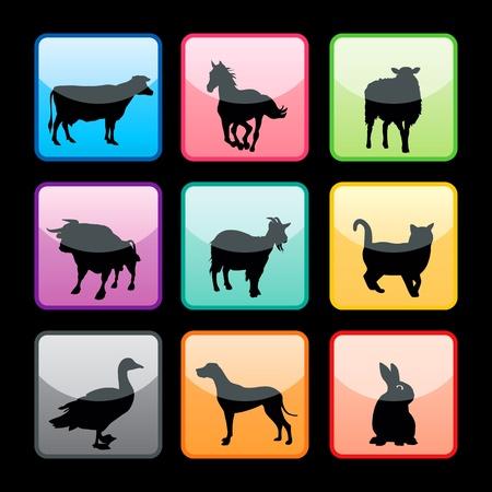 bullock: Farm animals silhouettes set