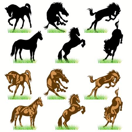 trotando: Conjunto de siluetas de caballos Vectores