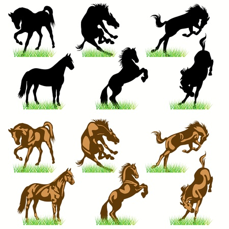 dressage: Ensemble de silhouettes de chevaux Illustration