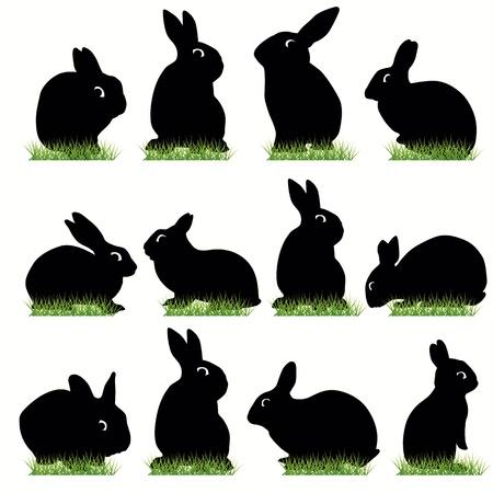 silhouette lapin: Ensemble de silhouettes de lapins