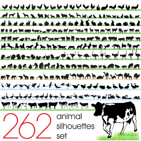 cow illustration: 262 animals silhouettes set Illustration