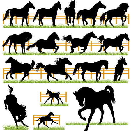 trotting: Set of 17 Vector Horses Silhouettes