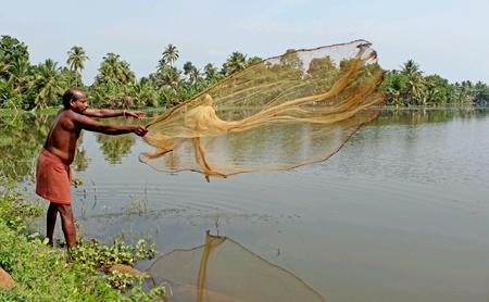 red: La captura de peces