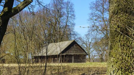 Horizontal image of an old rustic abandoned house and trees on nature background. Countryside concept. Space for text.