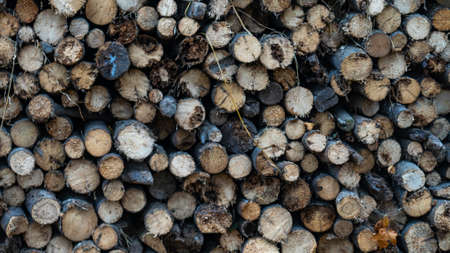Neatly stacked big pile of chopped fire wood logs prepared for winter at vintage wooden barn wall. Texture for design. Cut firewood stack logs as pattern. Foto de archivo