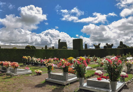 topiary: Topiary Cemetery From Tulcan Featuring A Wide Variety Of Imaginative Forms And Shapes Including Angels, Animals And Geometrical Figures Stock Photo
