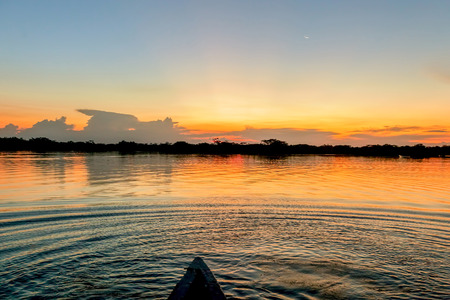 inundated: Sunset In National Park Cuyabeno, Laguna Grande, South America