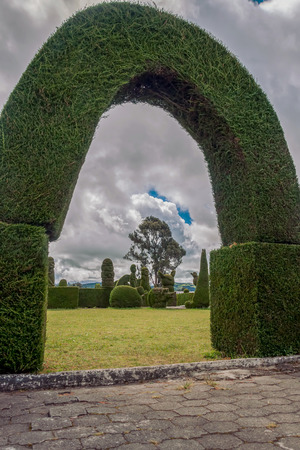 The Cemetery Of Tulcan Is Located Is The Calcareous Soil That Favor The Growth Of Cypress, Ecuador, South America