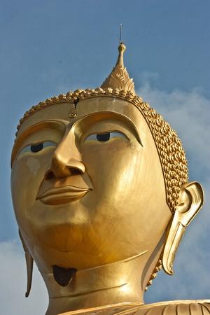 sacred source: Many of the Buddha
