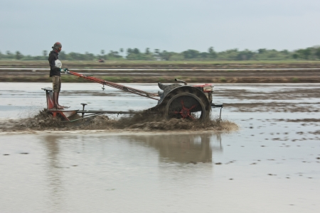 a farmer prepares the ground in growwing plant the agricultural , do transplanting rice seedlings for do something , inject a medicine for kill an insect , a farmer must do the farm through all year in year that have fertile water , this a farmer in Thail