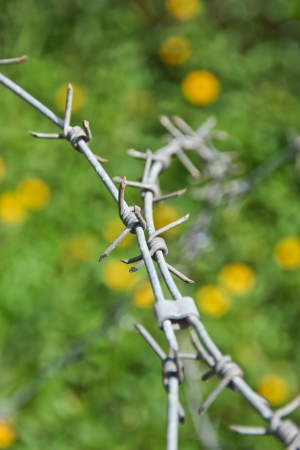 obstruct: barbed wire , be a tool obstructs , be a fence will protect the thing to will come in in the boundary , or , place no take to permit , it is hindrance symbol especially