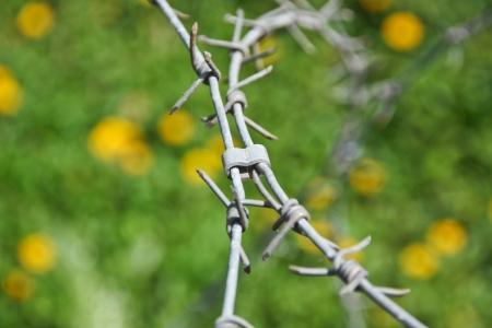 barbed wire , be a tool obstructs , be a fence will protect the thing to will come in in the boundary , or , place no take to permit , it is hindrance symbol especially