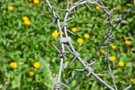 hindrance: barbed wire , be a tool obstructs , be a fence will protect the thing to will come in in the boundary , or , place no take to permit , it is hindrance symbol especially