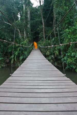 Construction of wooden bridge to the safety of the tourists who enjoy the nature