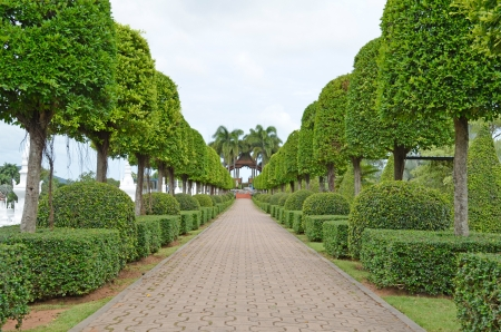 landscaping flowers trees beautiful to look tidy  To give visitors an income countries