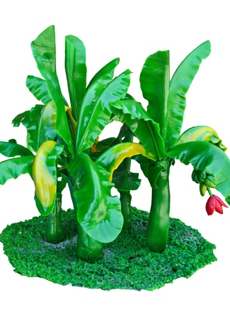 Banana plants are eaten by almost all sections of the stems  Useful to the body  And much more useful  Stock Photo - 15771570