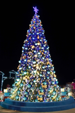 Christians celebrate New Year, often decorated with Christmas lights on the tree well  Symbol of the work is  Santa photo
