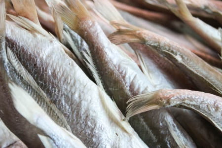 food preservation: Dried fish as a food preservation that can be stored for long. And a product that can be sold to an income of farmers.