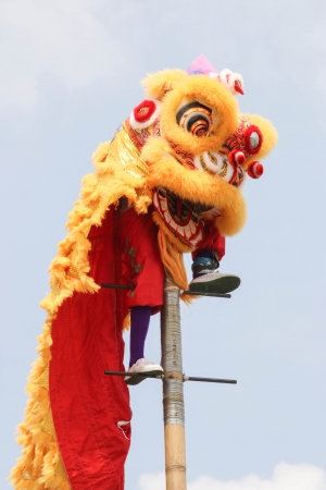 Festival parade lion Is a festival that happens once a year  Is a very important festival for Chinese people all over the world