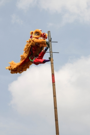happens: Festival parade lion Is a festival that happens once a year  Is a very important festival for Chinese people all over the world