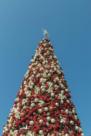 �rbol de Navidad. Foto de archivo