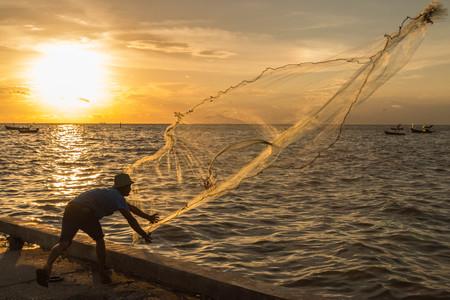 fischerei: Fischerei oder Fischereimanagement bedeutet Menschen für Fische oder andere Wassertiere zu fangen.