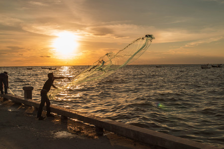 fisheries: Fisheries or fisheries management means of human to catch fish or other aquatic animals.
