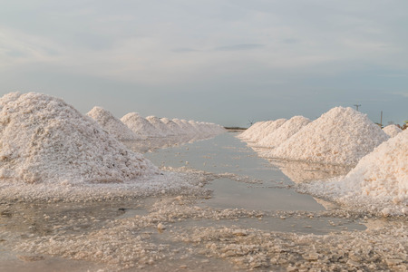 crystallize: Water retention while sea water. Salt will not crystallize in Tak. When the concentration of salt appropriations It is released into the sea from the suns unbelievable.