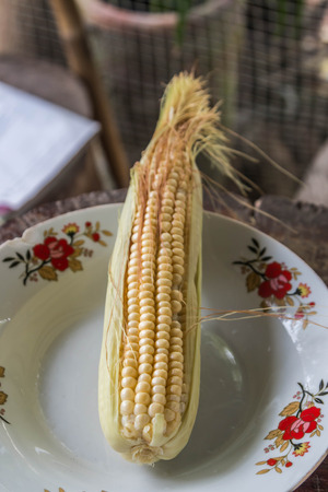 exceeding: Fresh corn is a plant for a period not exceeding 75 days of planting corn that has been very popular are corn, sweet corn. Is there a way to grow corn is very easy.