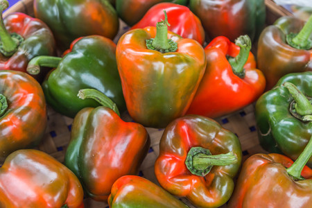 capsicum plant: The genus Capsicum pepper plants in the family Solanaceae, which is a spice (spice) one. Nature botany. Chili is biennial plant with a single result.