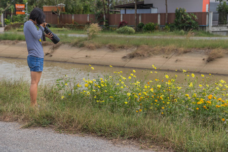 A photographer taking a photo of the wild flowers by a small river