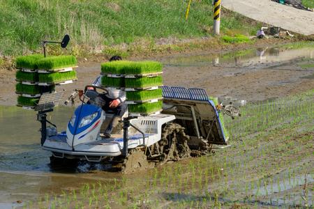 The Korean farmer rides riding type power driven rice transplanter Reklamní fotografie