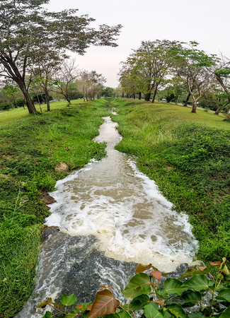 Small straight waterway pass through botanical garden in tropical area. Fish Eye angle. Banco de Imagens