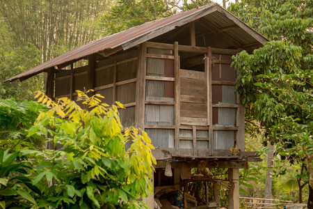 Old wooden barn with zinc wall in countryside. Barn is a storehouse usually for collecting unmilled rices for use along the year until next rice farming season.