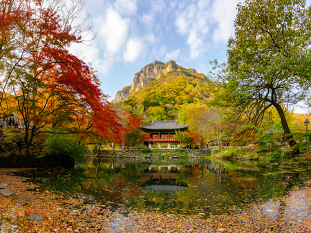 Beautiful scenic autumn leaves colour changing and Korean style pavilion with their reflection over the pond in Baekyangsa temple in Daedunsan national park, South Korea.