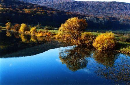 gaily: Mirror of yellow trees in blue lake. Crimea, Ukraine