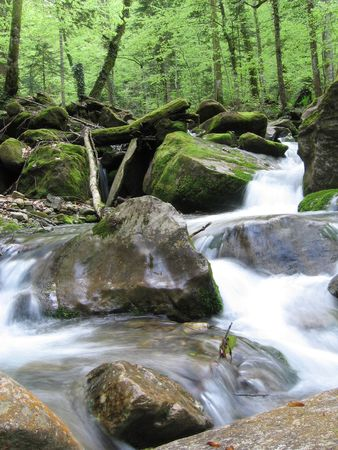 bourn: Waterfall in Caucasus forests