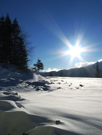 woodscape: Sun and snow landscape