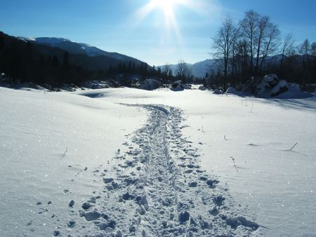trailway: Sunny winter day and trail-way