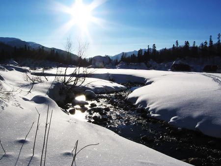 woodscape: Snowcovered meadow and sun Stock Photo